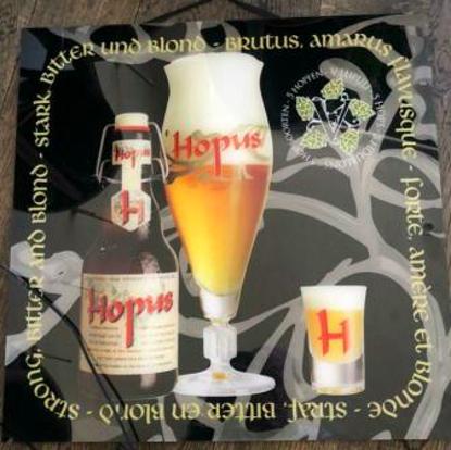 Afbeeldingen van Hopus lichtreclame 50cmx50cm