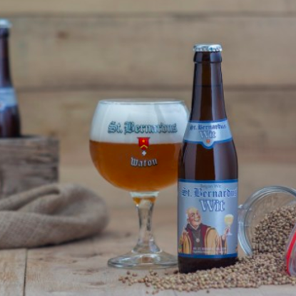 Picture of ST.BERNARDUS wit 5,5% 1x33cl