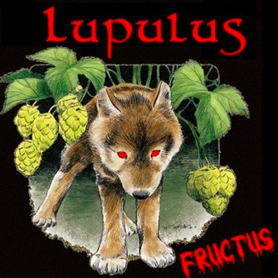 Afbeeldingen van Lupulus Fructus 4,2% 1x33cl