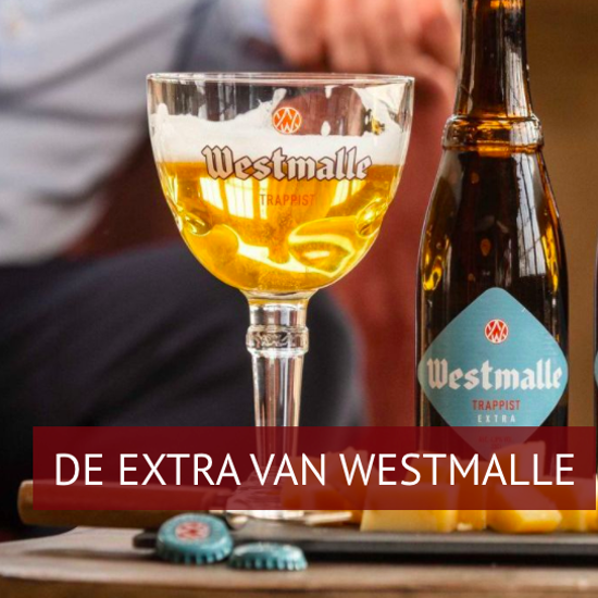 Picture of Westmalle 4,8% 24x33cl